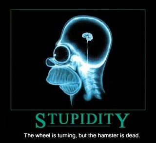 -estupidez_humana.jpg