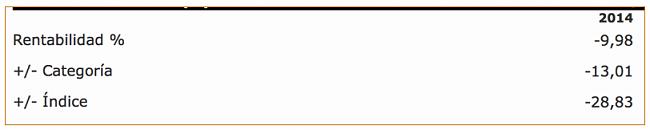Renaissance Sub-Saharan Fund.-captura-de-pantalla-2015-08-12-las-17.37.48.png